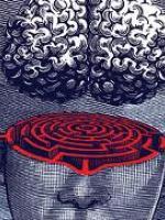 Psicoterapeuta, Psicoanalista, Neuroscienze e psicoanalisi